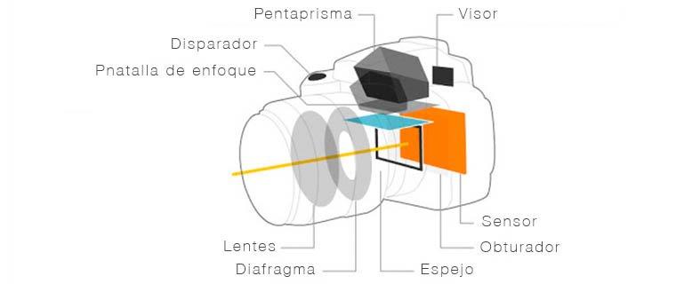 Camaras reflex para iniciarse en fotografia